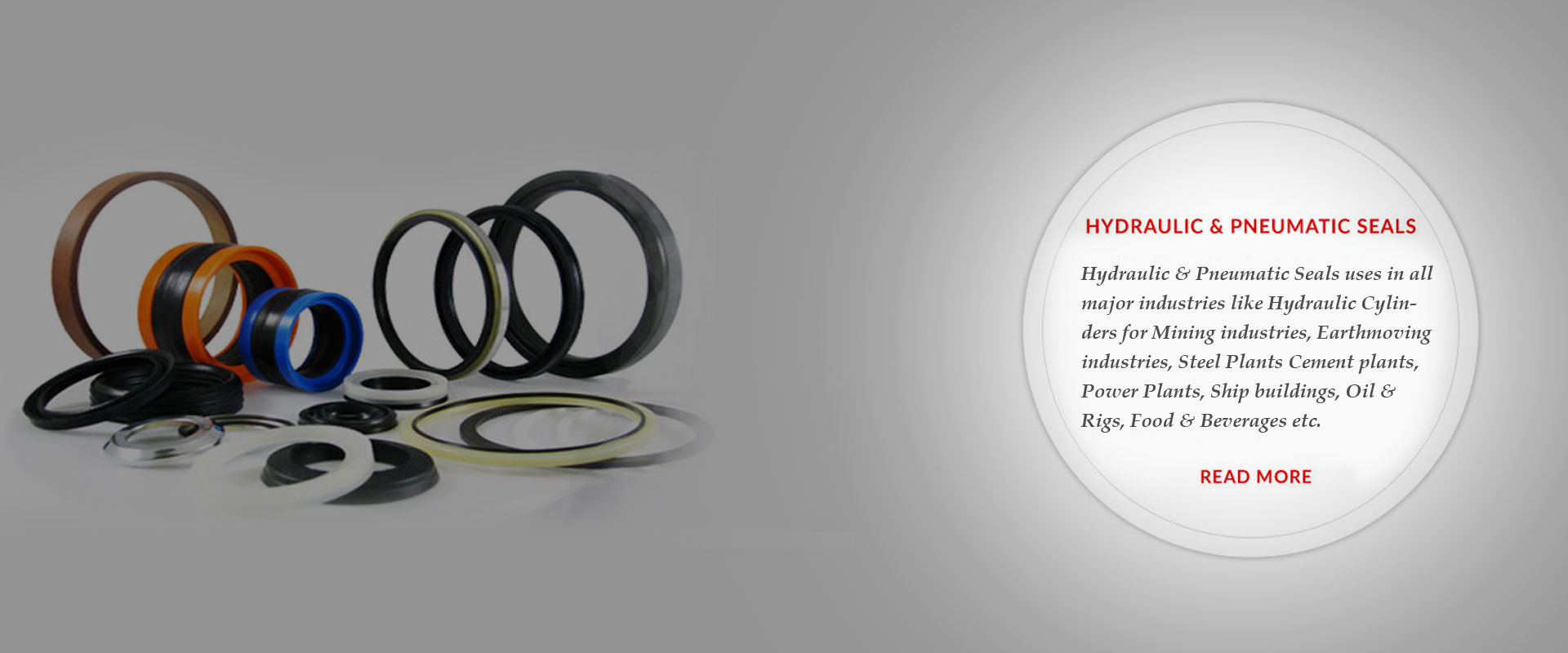 Hydraulic Seal & Pneumatic Seals - We offer extensive range of Customized Hydraulic & Pneumatic Machined Seals from 10mm to 1500mm Dia within shortest possible time with imported Polyurethane, Rubber, Teflon & Nylon material.